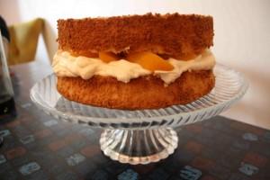 Doris-Days-Peach-Angel-Food-Cake1