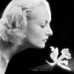Carole Lombard's Cherry Tart